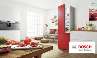 Bosch Kühlschrank Neue Modelle : Bosch siemens bigbox für gefrierschrank kühlschrank kühl